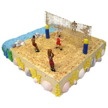 Narozeninové dort Plážový volejbal - Narozeninové dorty pro Vás