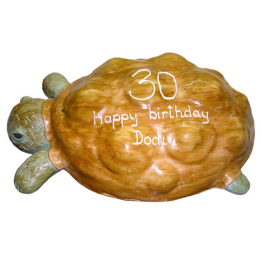 Narozeninový dort Želva - dětské dorty Praha